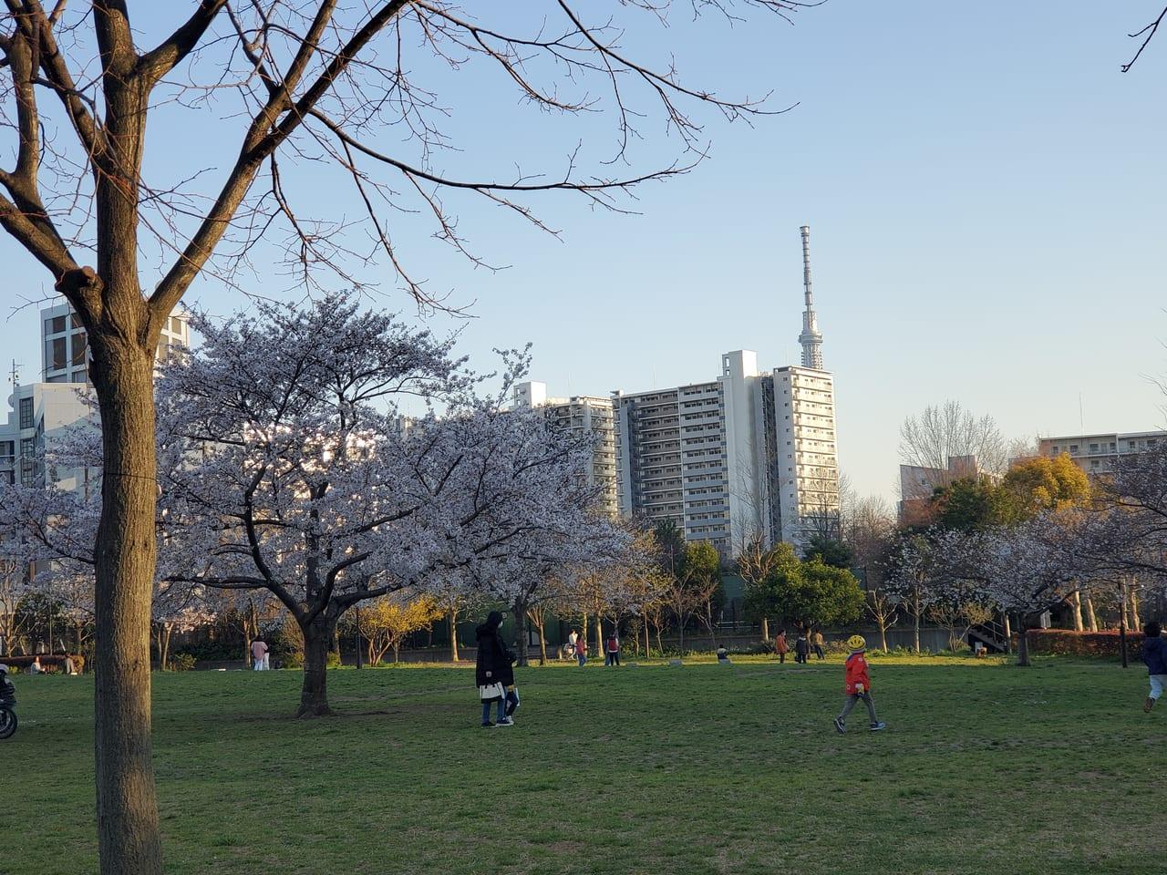 都立汐入公園
